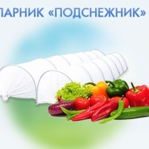 Парник Подснежник